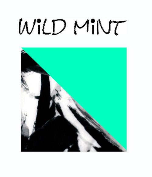 wild mint surbikini